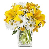 Flowers to Delhi : Yellow Lily White Gerbera