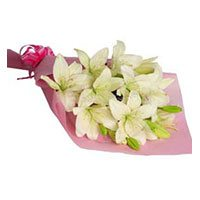 Birthday Flowers to Delhi : Pink White Lily