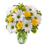 Online Flower Delivery in Delhi - Anthurium Basket