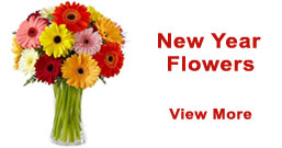 New Year Flowers to Delhi